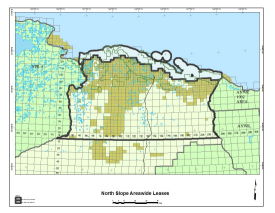 North Slope Oil and Gas Leases